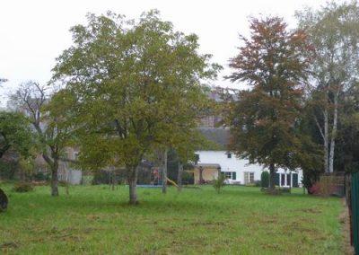 Tuin boomgaard zicht op het huis