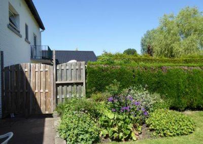 tuin Forge Neuve heg en beplanting